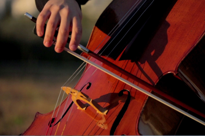 Tribute to the International PelionFestival's Violoncello Festival